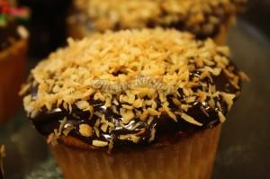 vanilla cupcake1