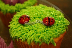 vanilla cupcakes lady bug