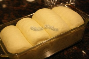 japanese milk bread dough2